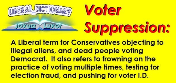 1 liberal dictionary voter suppression